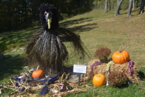 Glenn the Raven by Raven's Glenn Winery and Restaurant took first place.