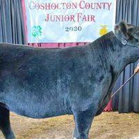 October 15, 2020 Coshocton County Beacon