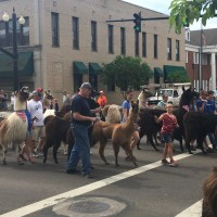 Entry forms available for Memorial Day Parade