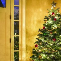 Leadership Coshocton to have Christmas tree drive