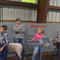 Help support area youth through the livestock auction