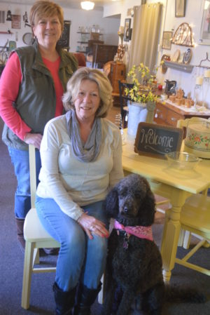 Sisters Patti Ridenbaugh (standing) and Debbie Ungurean (sitting) have opened Kozy Kottage Antiques & Gifts. The shop will have its grand opening on Friday, March 24. Pictured with them is the shop's dog, Patsy Cline. Josie Sellers | Beacon