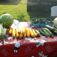 Farmers' market directory to aid SNAP recipients