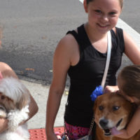 Dogs take over First Friday celebration