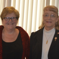 Co-nurses of the year selected
