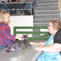 Small animal show tests owner's knowledge of pets