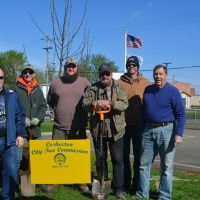 Tree commission plants trees at Himebaugh Park and CES