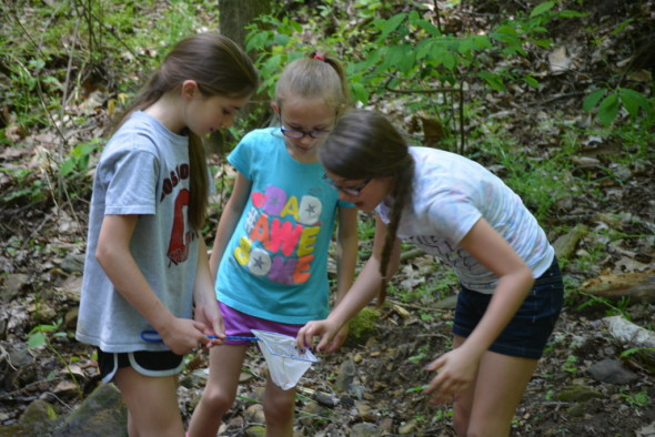 Addison Rice, Taylor Brown, and Emily Johnson catch a tadpole during Clary Garden's Nature Day Field Trip on May 23.