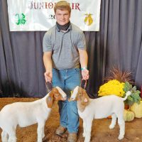 Cannon takes high honors in goat show