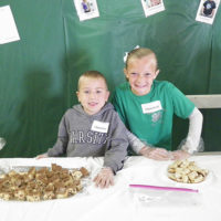 4-H Tasting Smorgasbord a treat for the taste buds