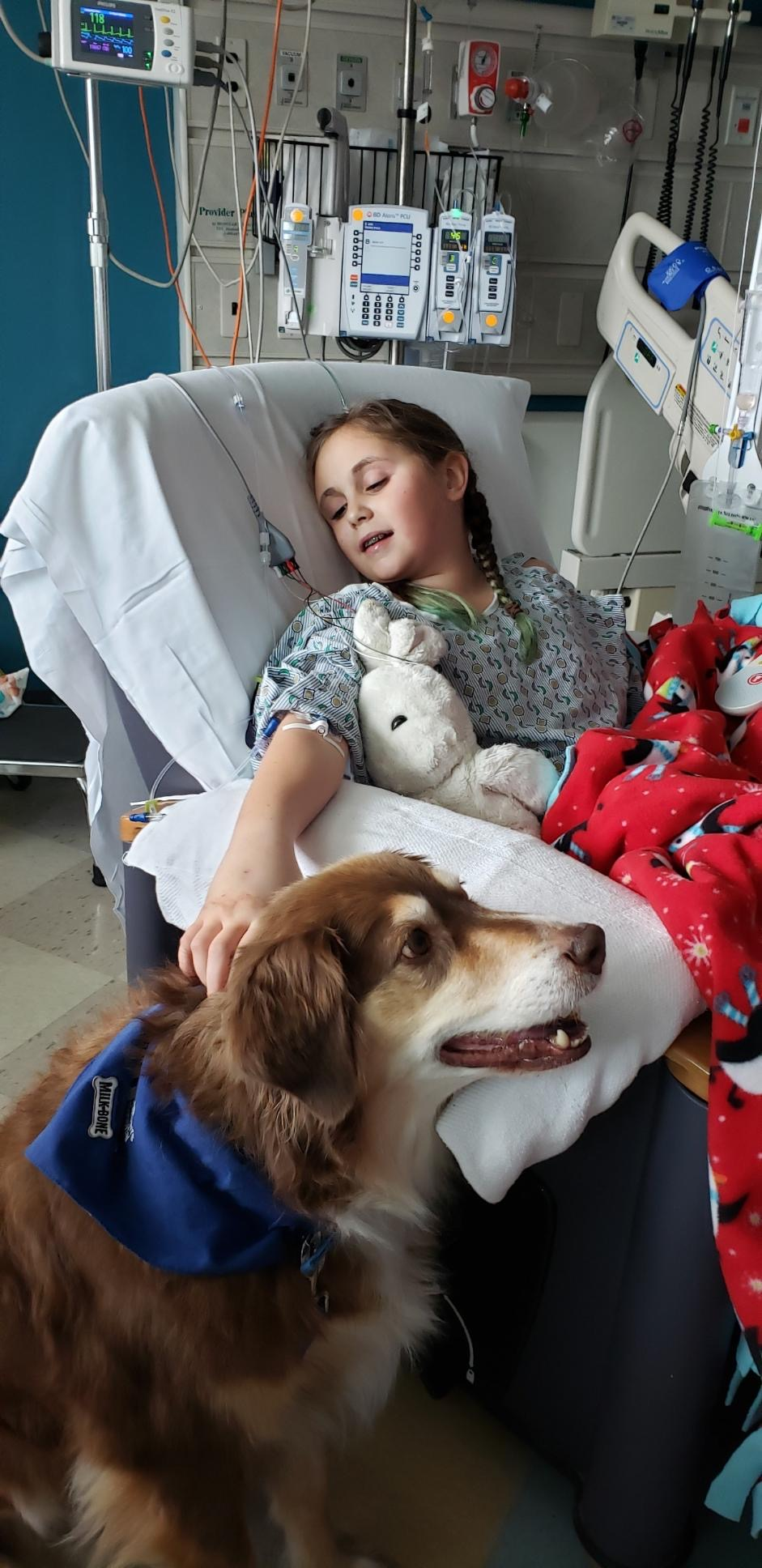 Akron doggy brigade after brain surgery