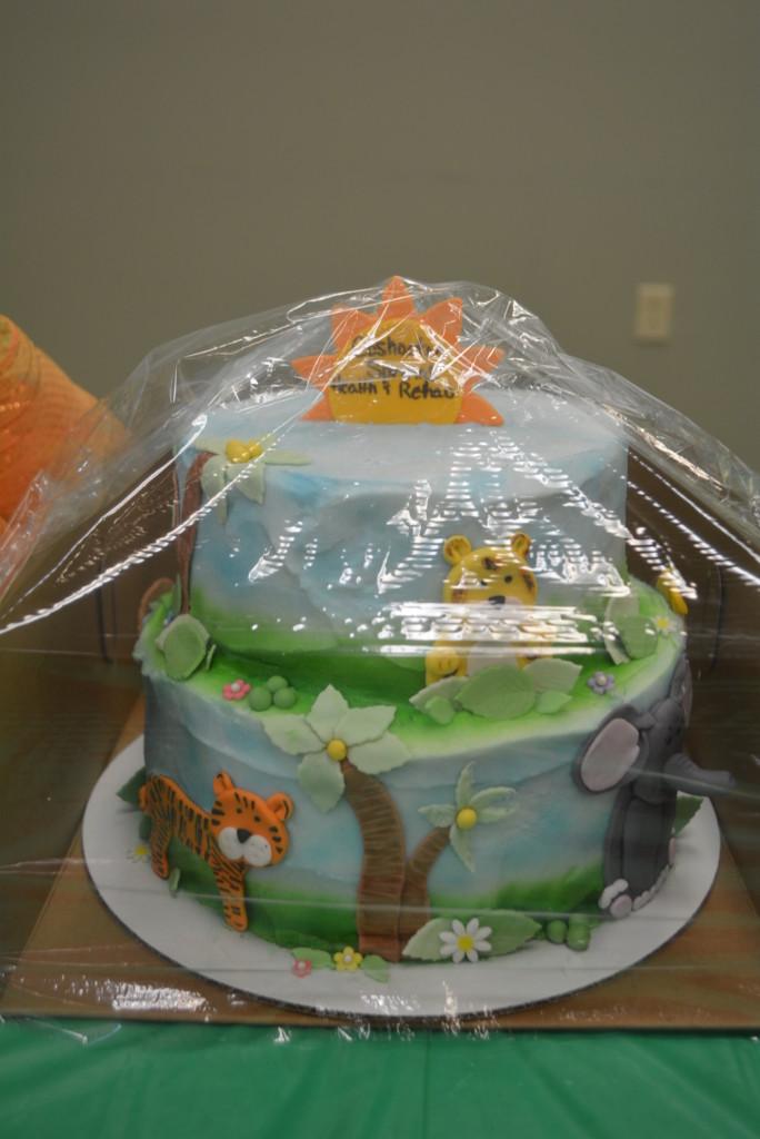 BPW Cake Auction 021