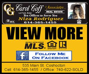 Carol-Goff-Real-Estate-300×250