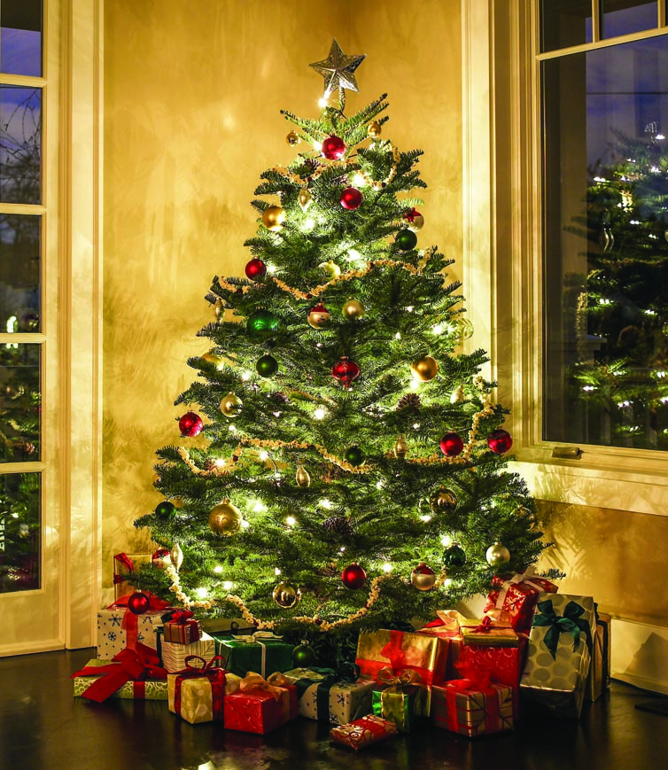 The Christmas Tree.Leadership Coshocton To Have Christmas Tree Drive