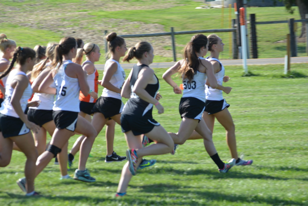 Coshocton County Cross Country Classic37