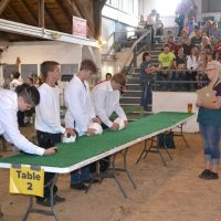 Rabbit show draws large crowd at fair