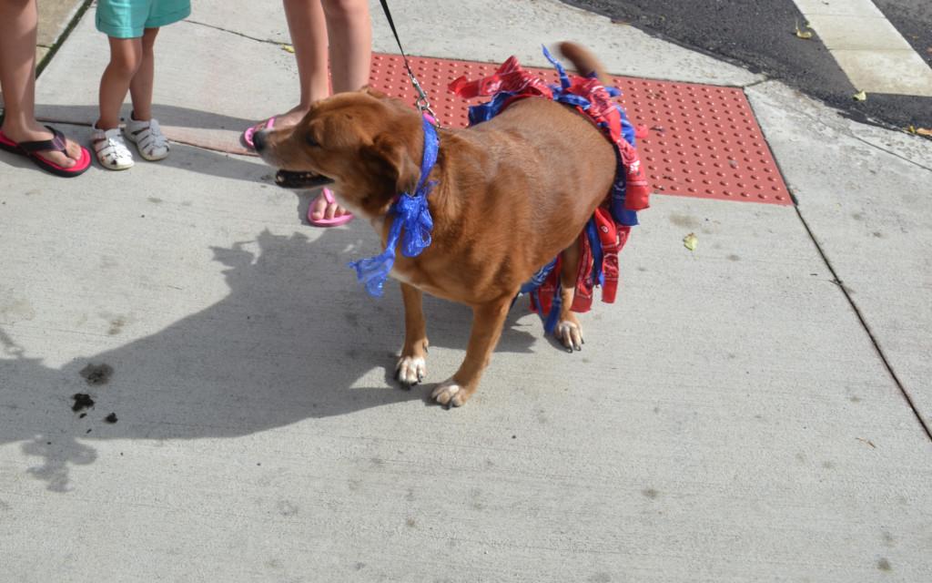 First Friday Dog Parade07