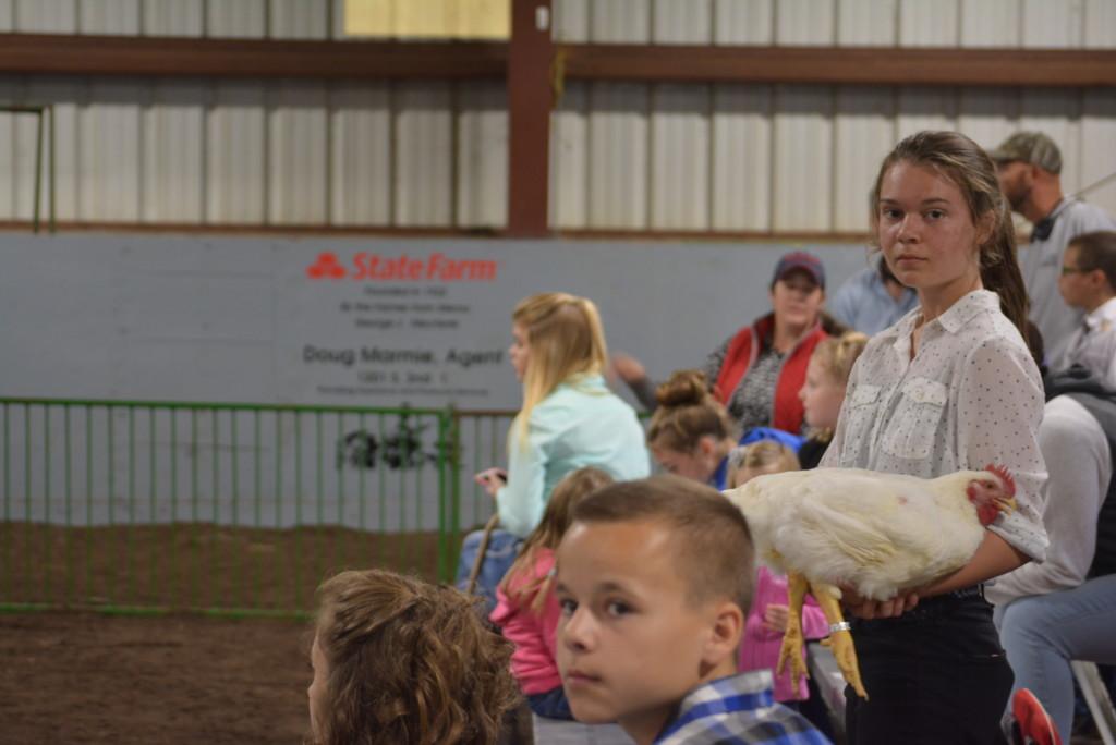 Junior Fair Auction07