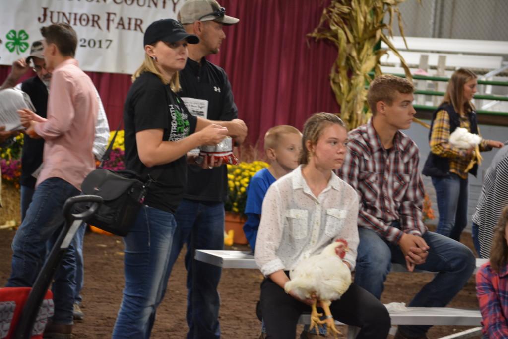 Junior Fair Auction09