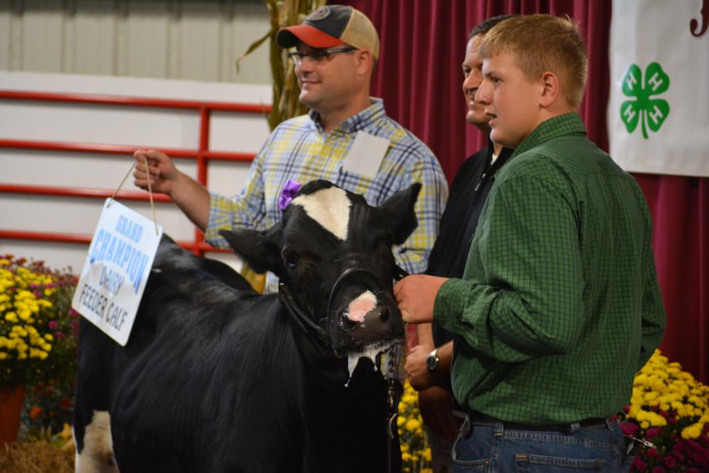 Junior Fair Auction18