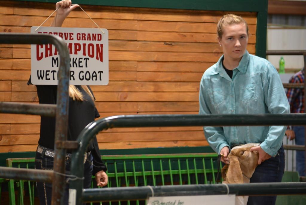 Junior Fair Auction22