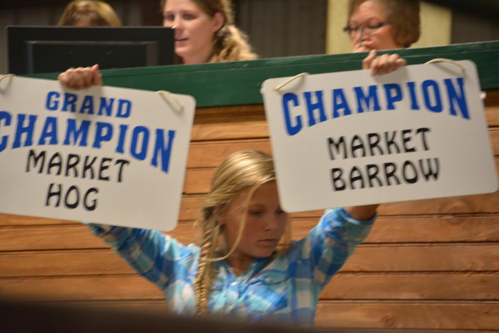 Junior Fair Auction24
