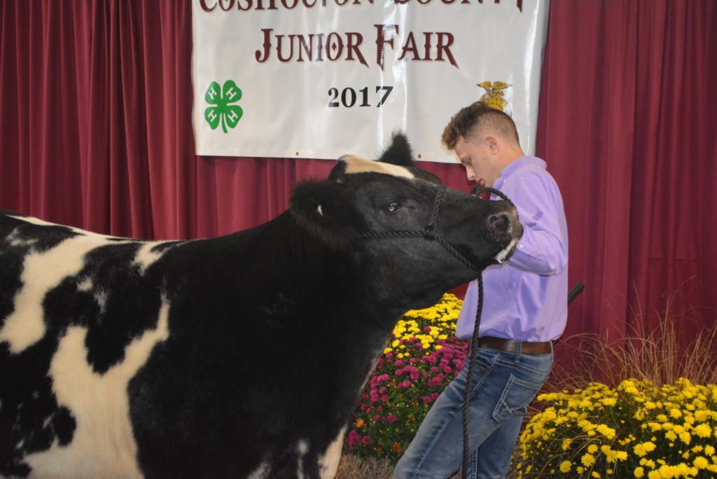 Junior Fair Auction37