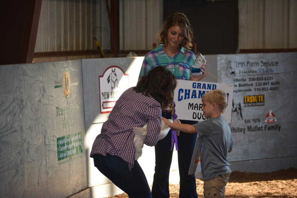 Junior Fair Livestock Auction04