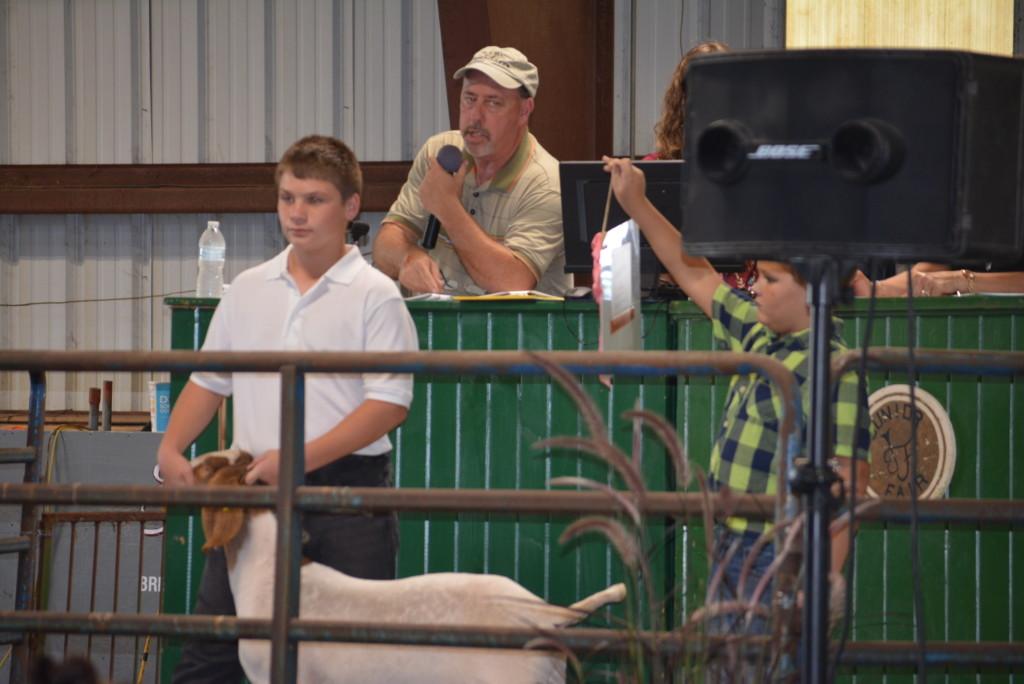 Junior Fair Livestock Auction15