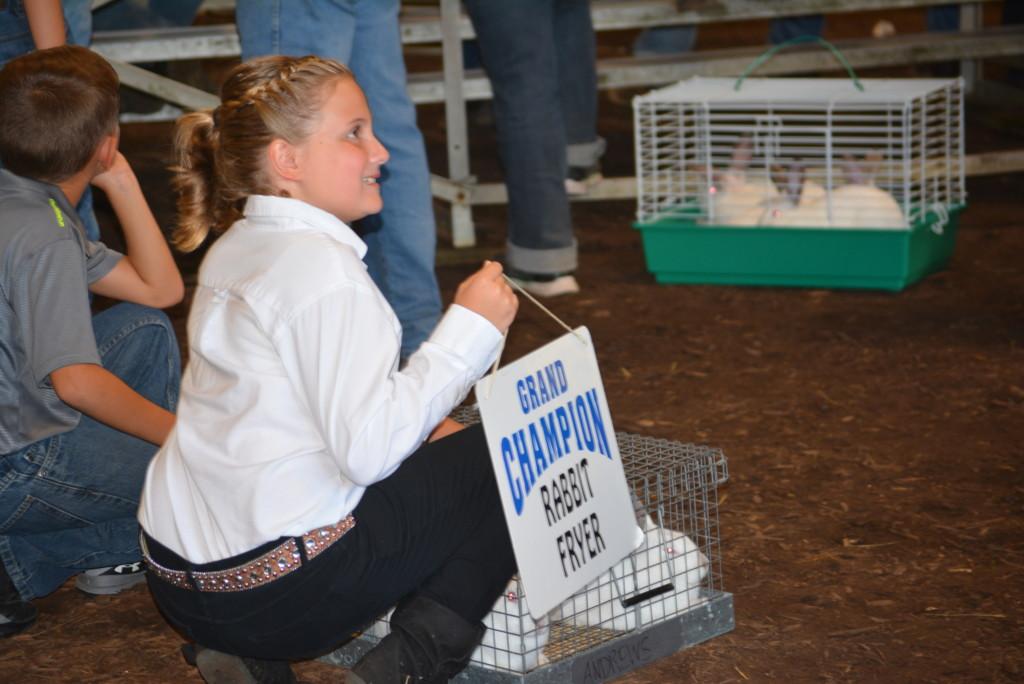 Junior Fair Livestock Auction19