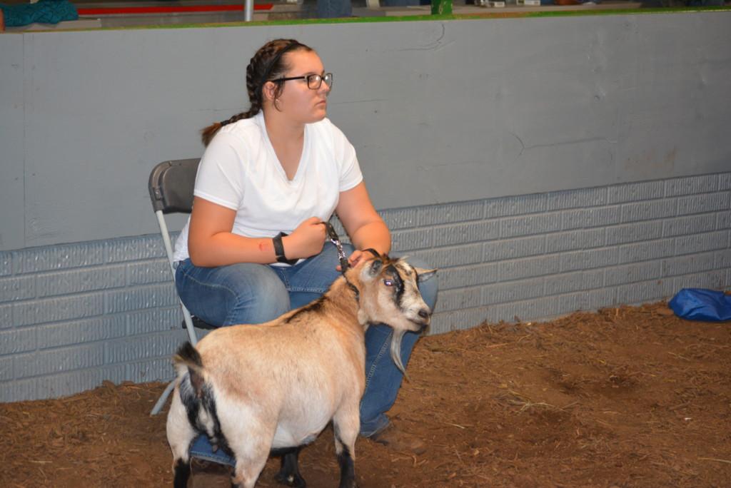 Junior Fair Livestock Auction20