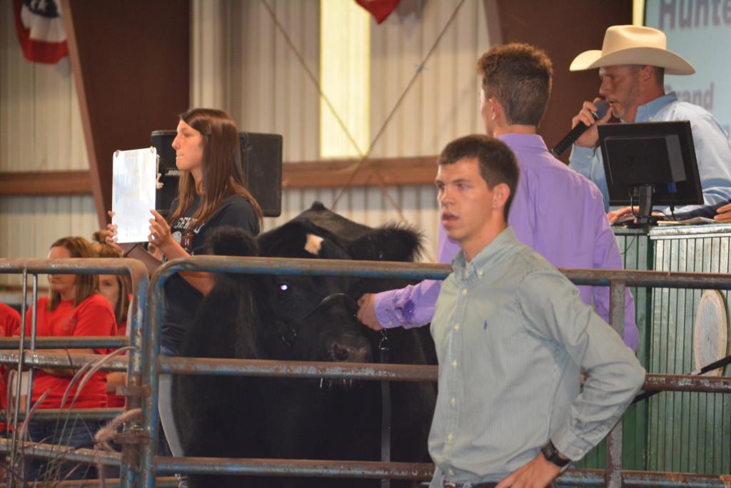Junior Fair Livestock Auction22