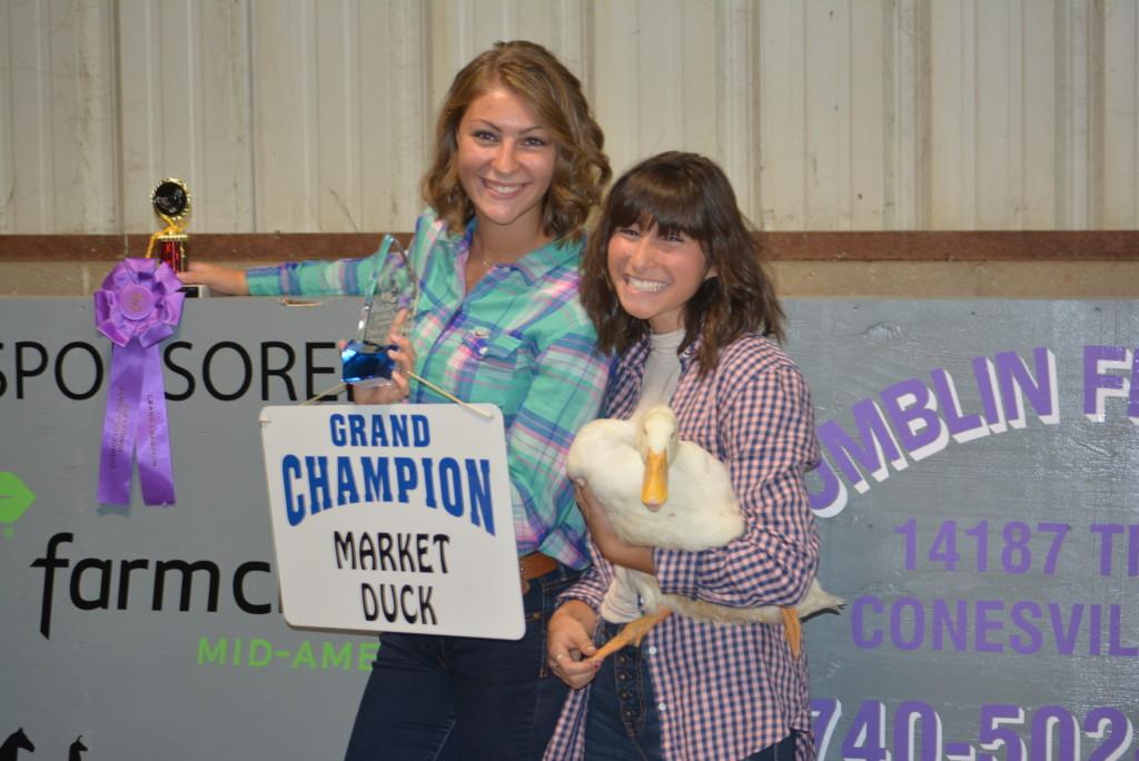 Junior Fair Livestock Auction23