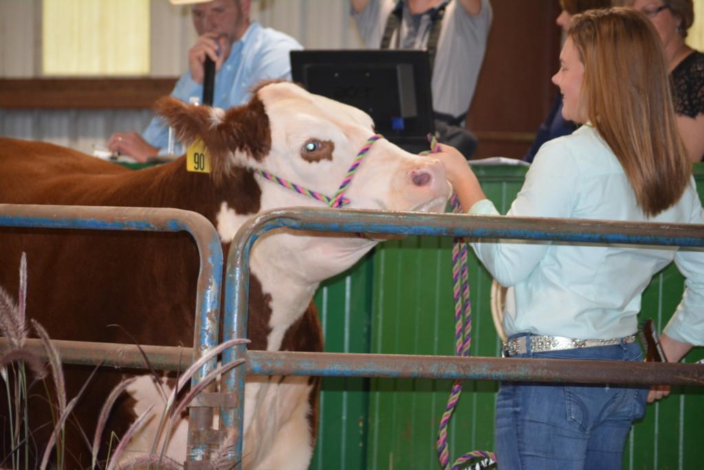 Junior Fair Livestock Auction24