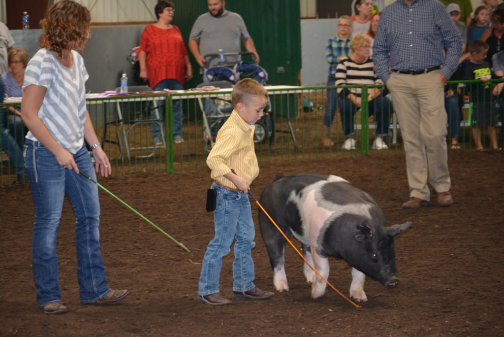 Pee Wee Hog Class12