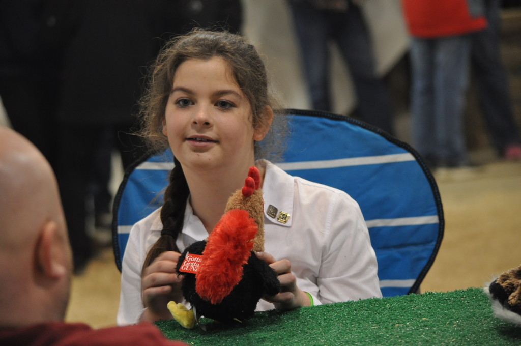 Poultry Show02