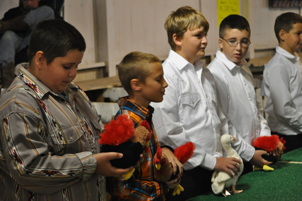 Poultry Show06
