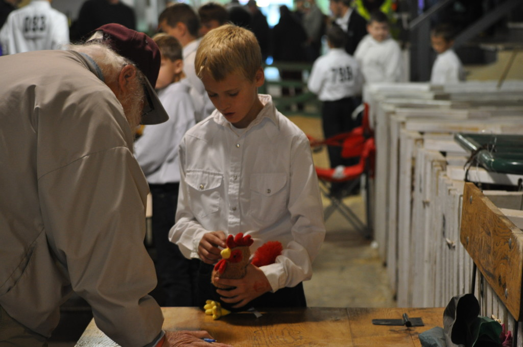 Poultry Show11