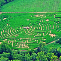 McPeek's Mighty Corn Maze featured in blog