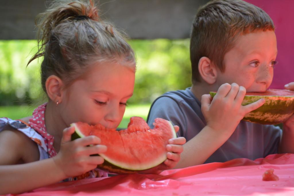 Watermelon Contest 004