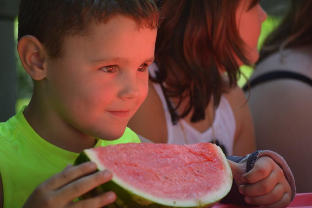 Watermelon Contest 100