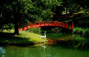 Schnormeier Gardens in Gambier