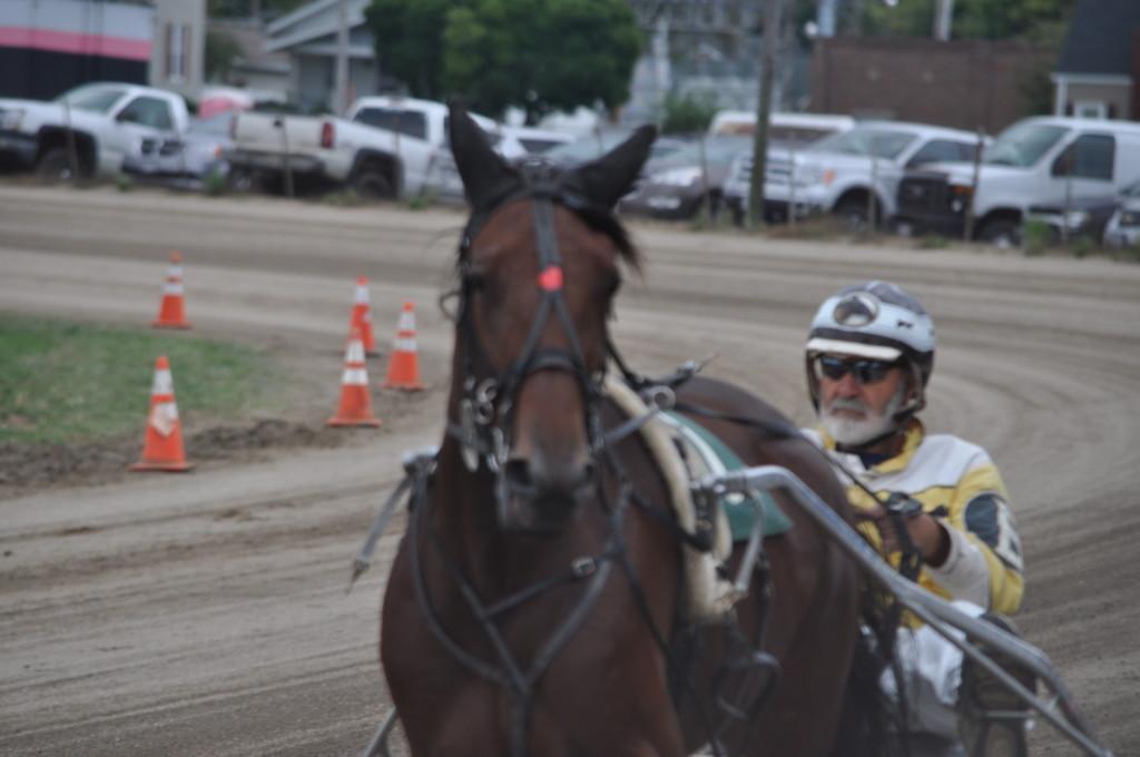 harness racing01