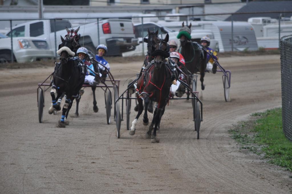 harness racing07