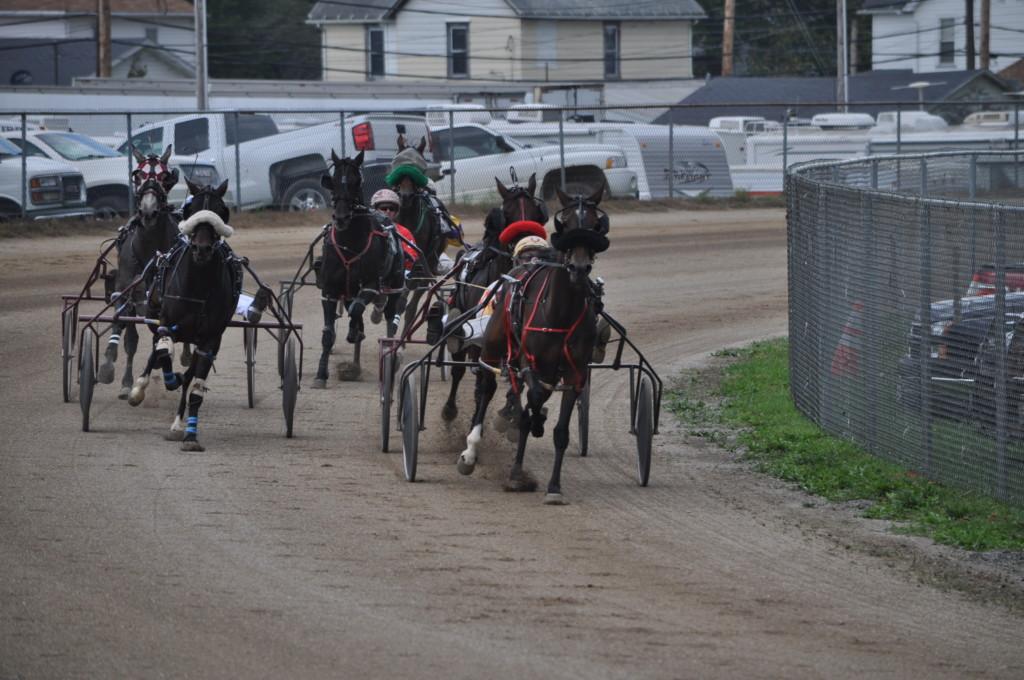 harness racing08