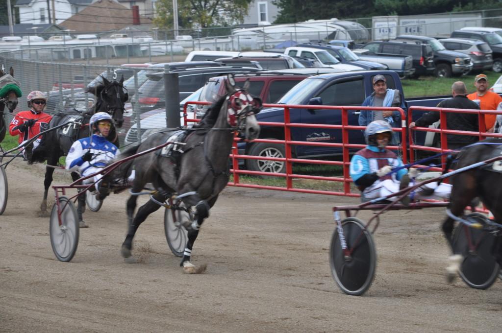 harness racing11