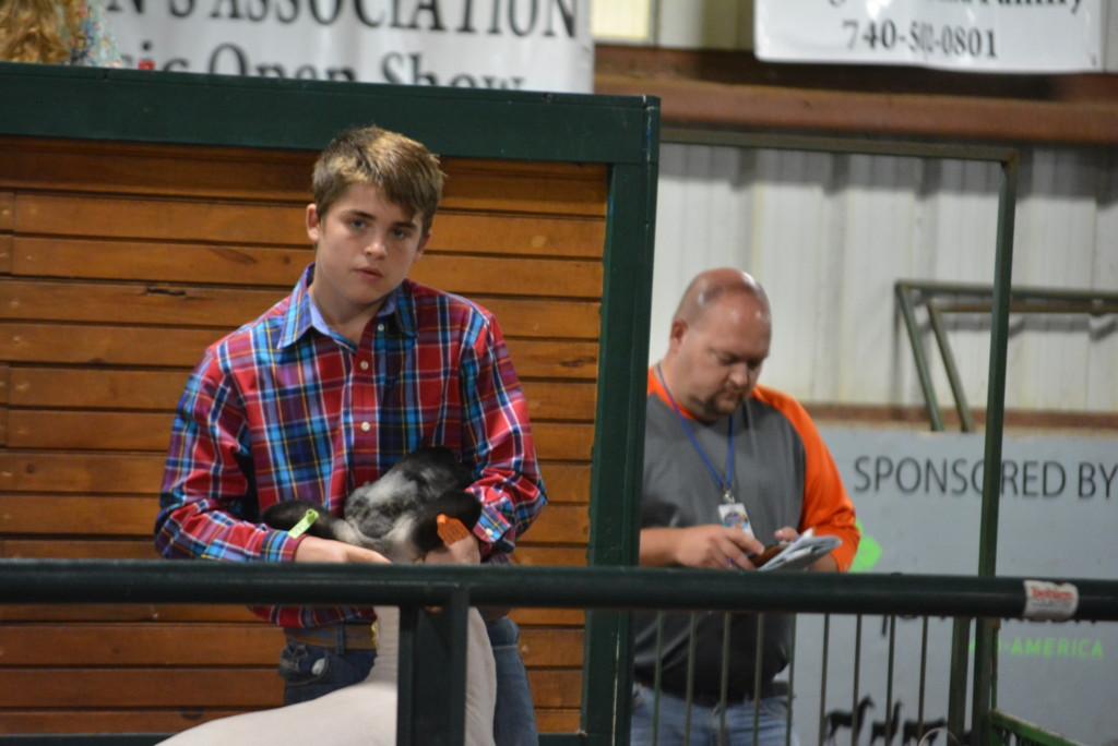 junior fair sale of champions22