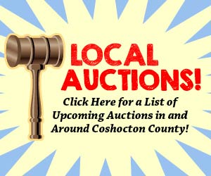 local-auctions-300×250