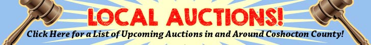 local-auctions-728×90