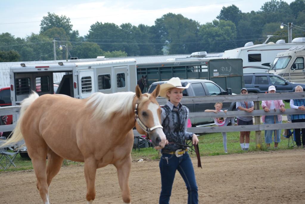 open horse show12
